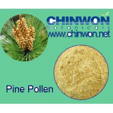 78. Perte de nourriture saine Poudre de pollen de pin