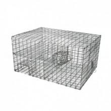 Ecuador codornices jaula quail cage