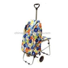 carrinho de compras com cadeira