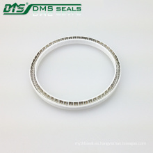 DMS Auto Pump Energized PTFE Rubber Hydraulic Spring Seals