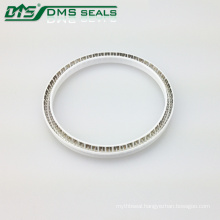 Plastic Seal/PTFE Seals with Resistance to Harsh Mediums for Sealing