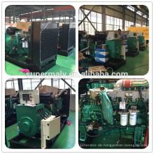 CE ISO genehmigt China Diesel-Generator-Set mit einer Jahr Garantie