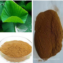 Weight Loss Nuciferine 2% Lotus Leaf Extract