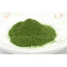 80 Mesh Spinach Powder Freeze Dried Vegetables Bulk Product