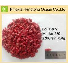 Fornecimento direto da fábrica Pure Natural Goji Berry