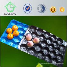 Tipo forro plástico descartável plástico do processo da bolha dos PP para o empacotamento dos produtos frescos