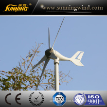 300W Small Good Quality 3 Years Guarantee Wind Power Generator