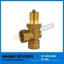 Messing Gasventil Hersteller Fast Supplier (BW-V02)