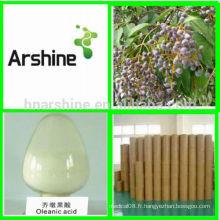 HPLC / UV GMP Factory Olea Europaea Extrait en poudre Acide Oleanol