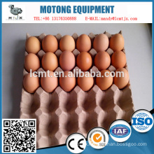 30 Egg Carton Latest Wholesale Price