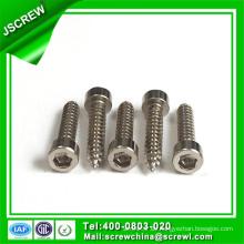 China Hardware principal de acero inoxidable de acero hexagonal cabeza de casquillo Tornillos