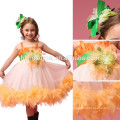 2017 nuevo vestido de rendimiento de desgaste de danza de la manera un vestido de tutú de bebé de pluma de las PC