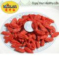 Ningxia Native Organic Dried Goji Berry