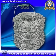 Hot-Dippedelectro Galvanized Barbed Wire for Protecting