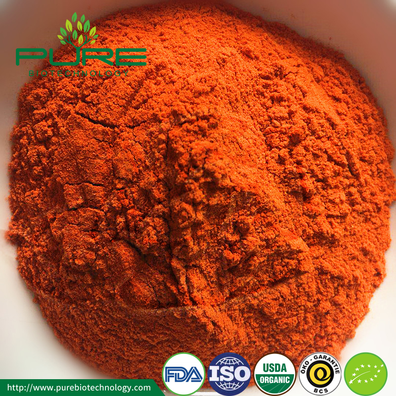 Organic Goji Berry Powder Goji Extract3