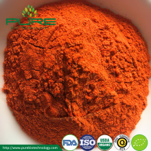 Organiczny Goji Berry Powder Goji Extract