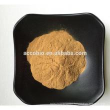 Best selling Top grade Plantago major Extract powder 5:1-20:1
