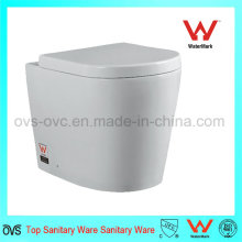 Ceramic Wall Hang Toilet Wc for New Toilet