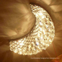 Decorative lighting ceiling fan, China ceiling light