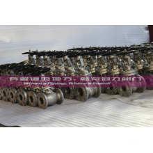 Valve de porte en acier inoxydable CF3m