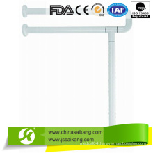 FDA Certification Simple Outdoor Metal Handrail for Steps