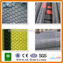 Poultry net hexagonal malla de alambre \ hexagonal red de alambre (ISO9001: 2008 profesional fabricante)