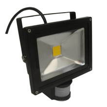 20W IP65 85-265V Contrôleur IR PIR LED Floodlight