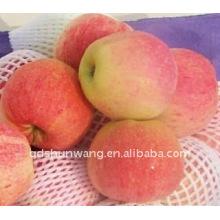 Chinês fresco gala maçã