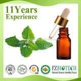 Wholesale Pure Natural Catnip Oil Price / Free Sample Catnip Essential Oil