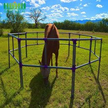 Hot-dipped+Galvanized+Horse+and+Livestock+Fencing+Panel