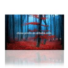 Dropship Service Canvas Print/Forest Canvas Wall Art/Autumn Landscape Canvas Art