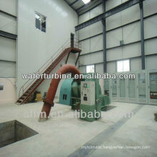 Hydroelectric generator for power plant