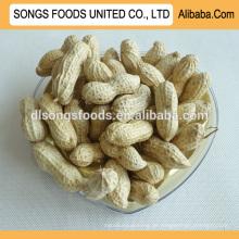 Import Bulk Erdnüsse zum Verkauf