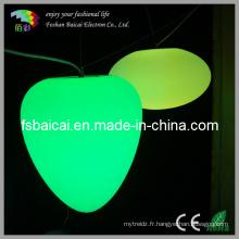 Lumières de plafonnier à LED de bon prix (BCD-441L)