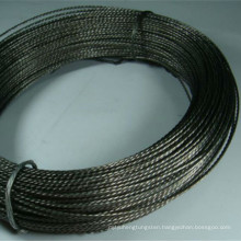 China Famous Brand 99.95% High Purity Twisted Tungsten Wire