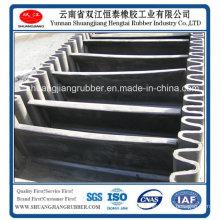 Heat Resistant Conveyor Belt with Sidewall