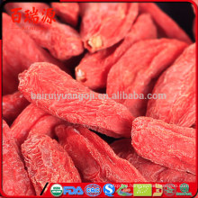 What is goji berry used for benefits of dried goji berries buy goji juice