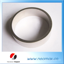 Strong Permanent Rare Earth Magnet for Sale