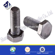 Zinc plated bolt Din933 bolt hexagonal bolt full thread
