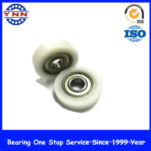 Most Popular and Top Level Plastic Deep Groove Ball Bearing (BS 10X35X10)