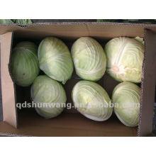 2013 fresh flat cabbage