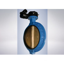 Electric Power Plant Butterfly Valve