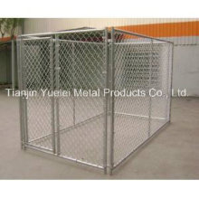 Galvanized Steel Outdoor Full Size Chain Link Box Kennel 10 X 10
