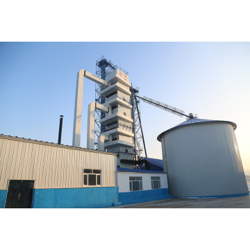 Working Stable Paddy Drying Equipment