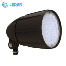 LEDER Design Outdoor 6W LED Spike Light