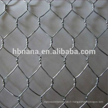 fil de poulet / filet hexagonal / treillis métallique hexagonal