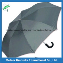 2 Fold Auto Open Umbrella for Promotion