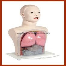 Modelo de Enfermagem Médica, Simulador de Alimentação Nasal e Lavagem Gástrica