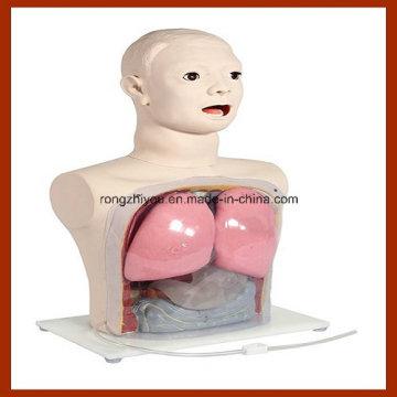 Medical Nursing Model, Nasal Feeding and Gastric Lavage Simulator