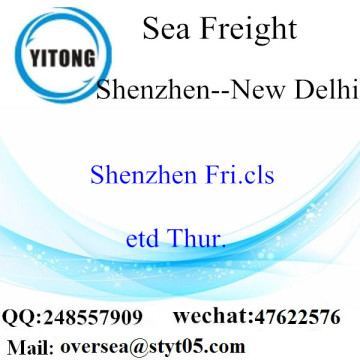 Shenzhen Port LCL Consolidation To New Delhi